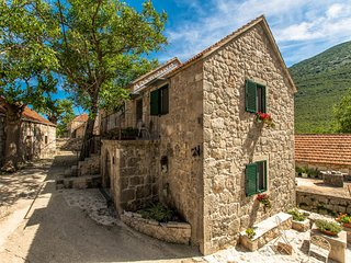 Private etno village traditional House VRGODINJ