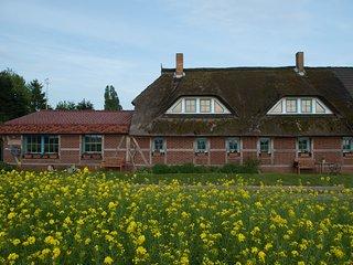 Landhaus Maltzien -Ferienwohnung OIE-
