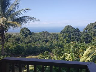 Ocean View Home on popular South Kona Coffee Farm!