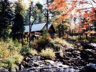 TIOGA FALLS CABIN: Very Secluded! Waterfalls! 80 acres, pets welcome!