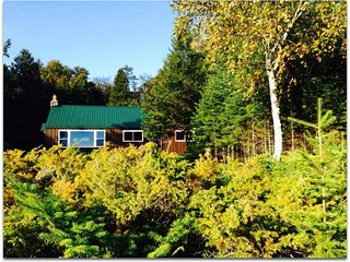 STONINGTON CLEARVIEW COTTAGE:  Private Lake Michigan cottage!