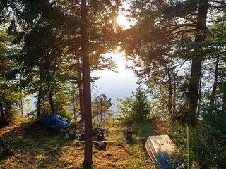 COLEMAN'S CABIN (McMillan, MI) East Lake: Oswald's Bear Ranch-25 min., Lakefront