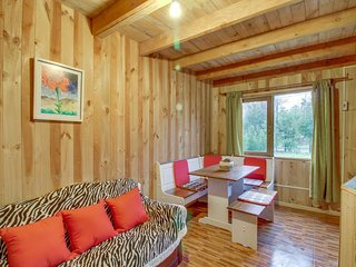 Cozy dog-friendly getaway w/crafted wood accents, two levels, & great location