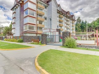 Chic, stunning apartment with lake and mountain views - dogs welcome!