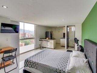 Apto. contemporáneo con vistas a la ciudad- Dog-friendly apt  w/ city views