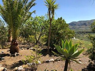 Casa Rural Las Palmeras (Villa Antonia)