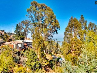 Tree House Views mins to SFO | Parking | WiFi