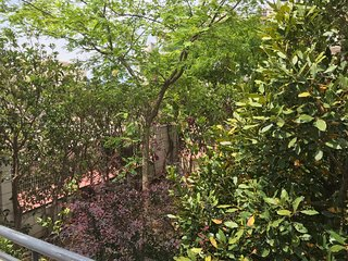 Bajo con jardin y terrazas privadas