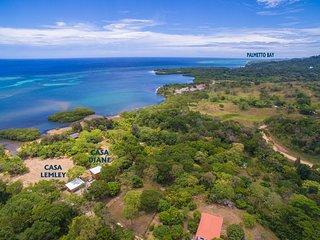 Near Palmetto Bay