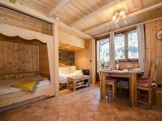 Ambiance montagne pour ce studio situe aux Praz de Chamonix