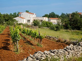 5 bedroom Villa in Cabrunici, Istria, Croatia : ref 5634882
