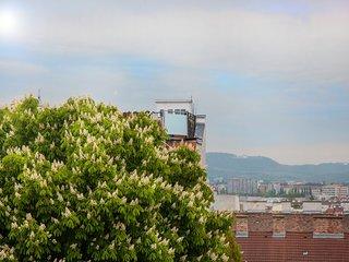 #44 Cube 70 - Dein stilvolles Altbauapartment in Wien (OpenSpace, Maximum 4 Pax)
