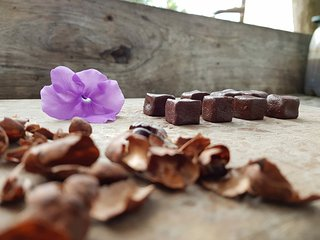 CHOCOLATE FARM ECUADOR (With an organic breakfast)