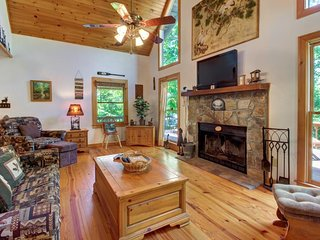 Family cabin w/wood fireplace & seasonal mountain & forest views - dogs OK!