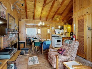 Peaceful dog-friendly cabin w/ modern perks & quiet location near lake & town