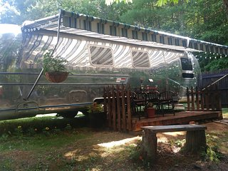 Vintage Airstream in private setting minutes from Blue Ridge