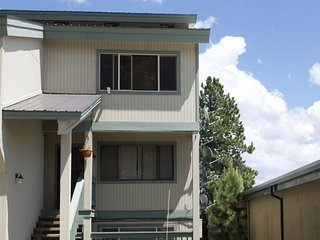 Convenient, affordable condo - walk to dining & shopping, 1 mile from the lake