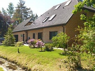 Haus am Wald in Zingst - Objektansicht von der Waldseite
