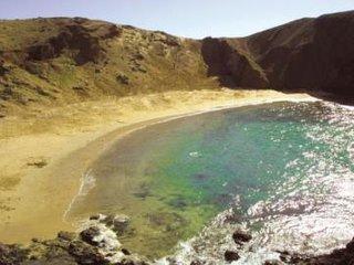1 bedroom Apartment in Playa Blanca, Canary Islands, Spain : ref 5547657