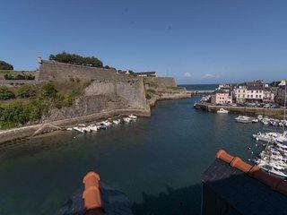 Pleine vue sur la citadelle et son port