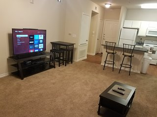 Downtown apartment near Alamodome and Tower of The Americas