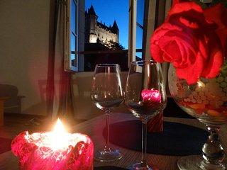 Vue splendide sur le Château et la Loire