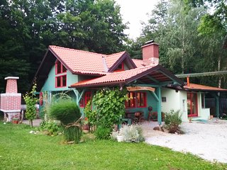 Fairytale Wooden house near Ljubljana very cheep- Matjazeva ponudba-fast interet