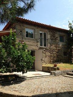 Lemon Tree Cottage at Terrus Winery