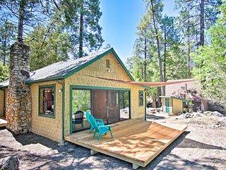 NEW! Idyllwild Cabin w/ 2 Decks Near Humber Park!