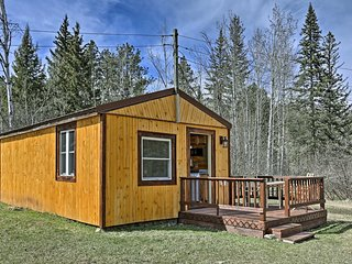 Black Hills Forest Cabin 3 Miles to Hill City!