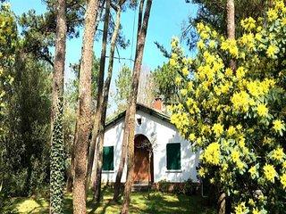 Maison traditionnelle T4, à 100 m de la plage Clémenceau