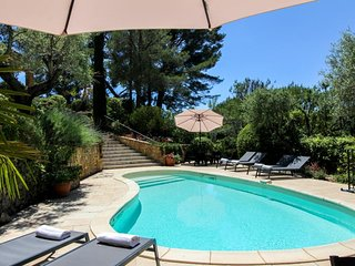 Provencal hilltop villa w/ pool, terrace & majestic vineyard views - dogs OK!