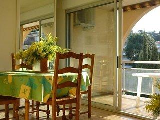 Bel appartement T2 climatisé de 40 m²avec terrasse de 20 m²