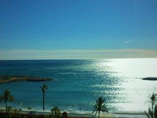 Studio climatise face mer avec terrasse