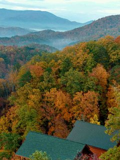 The deck of the cabin is the perfect spot to enjoy fall color!