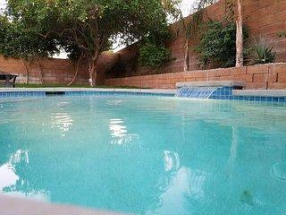 Sunshine and Pool on Palmwood Dr