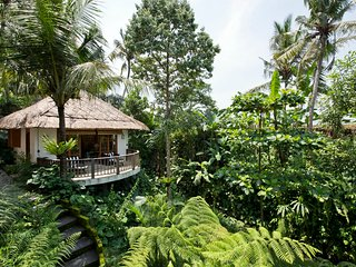 Mambo, Luxury 2 Bedroom Villa, Feature Gardens, Ubud