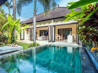 Villa Delice GREAT VALUE 2 Bedroom Villa in SEMINYAK