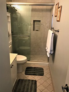 Master Bath w/ walk-in shower.