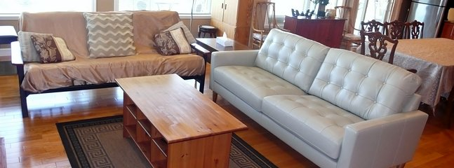 Great Rm 02 Sectional Leather Couch and Futon