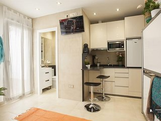 Stunning 1 bedroom Apartment in Madrid  (F1686)