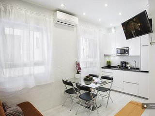 Stunning 1 bedroom Apartment in Madrid  (F2739)