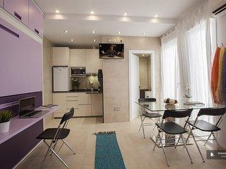 Wonderful 1 bedroom Apartment in Madrid  (F6833)