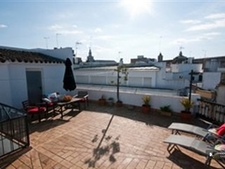 Splendid 2 bedroom Apartment in Seville  (FC9395)