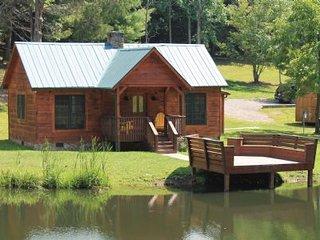 Seven Springs Cabin #53672