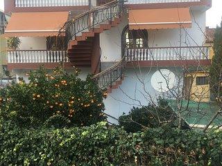 Hostel Villa