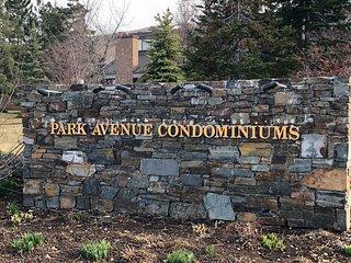 319 Park Ave Condos
