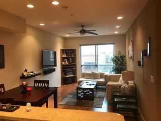 1 BR Gaslamp Condo - Ready for Guests!!