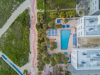 Oceanfront 1BR Suite for 4 guests, direct beach access, pool. Close to bar, cafe