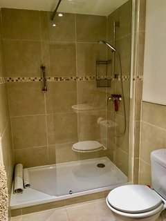 Family bathroom on the ground floor with luxury walk in shower.